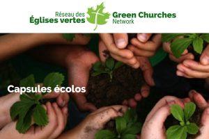 Capsules écolos – Églises vertes pour toute l'année